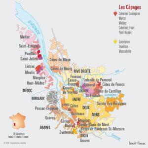 Bordeaux, un vignoble immense et ancestral